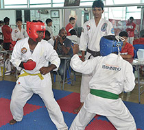 adyar_karate_institute,_karate_institute_in_adyar,_adyar_karate